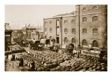 Barrels of Molasses in the West India Docks Giclee Print