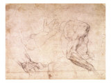 Studies of Hands and an Arm Giclee Print by  Michelangelo Buonarroti