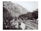 Mule Railway in North America, late 19th century Giclee Print