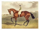 Bay Middleton, winner of the Derby in 1836, after John Frederick Herring Giclee Print by John Frederick Herring II