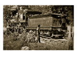 Locomotive on the United States Military Railroad, 1861-65 Giclee Print by Mathew Brady & Studio