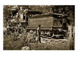 Locomotive on the United States Military Railroad, 1861-65 Giclee Print by Mathew Brady & Studio