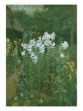 Madonna Lilies in a Garden Giclee Print by Walter Crane