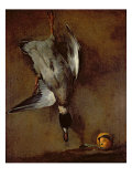 A Mallard Duck hanging on a wall with a Seville orange, 1720-30 Giclee Print by Jean-Baptiste Simeon Chardin