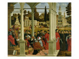 Debate of St. Stephen Giclee Print by Vittore Carpaccio