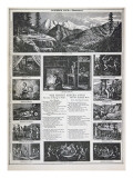The Honest Miner's Songs, from the Californian Gold Rush of 1849 Giclee Print