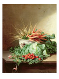 Still Life of Strawberries, Carrots and Cabbage Giclee Print by David Emil Joseph de Noter