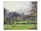 Morning Sun, Autumn, Eragny, 1897 Giclee Print by Camille Pissarro