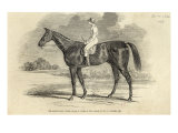 Sir Tatton Sykes', Winner of St. Leger, from 'The Illustrated London News', 26th September 1846 Giclee Print by John Frederick Herring II