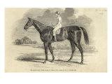 Sir Tatton Sykes', Winner of St. Leger, from 'The Illustrated London News', 26th September 1846 Giclee Print by John Frederick Herring II