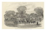 The Queen's Stag Hounds: The Meet, Aylesbury Vale, from 'The Illustrated London News' Giclee Print by Edward Duncan