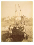 An Egyptian Irrigation Machine on the Banks of the Nile Giclee Print by G. Lekegian