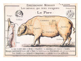 Cuts of Pork, illustration from a French Domestic Science Manual by H. de Puytorac, 19th century Reproduction procédé giclée