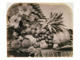 Still Life with Fruit, 1860 Giclee Print by Roger Fenton