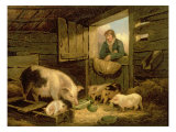 A Boy Looking into a Pig Sty, 1794 Giclee Print by George Morland