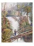 Itamaraty Waterfall in the Serra da Estrela Giclee Print by William Gore Ouseley