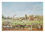 Cotton Plantation on the Mississippi, 1883 Giclee Print by William Aiken Walker