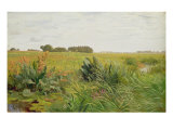 Between Geest and Marsh, c.1880 Giclee Print by Valentin Ruths