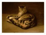 Recumbent Cat, 1898 Giclee Print by Théophile Alexandre Steinlen