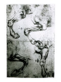 Studies of Horses legs Giclee Print by Leonardo da Vinci 