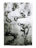Studies of Horses legs Giclee Print by  Leonardo da Vinci