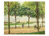 Street of Spanish Chestnut Trees by the River, 1878 Giclee Print by Alfred Sisley
