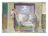 Sala dei Cavalli, showing portrait of 'Dario', horse from stables of Ludovico Gonzaga III of Mantua Giclee Print by Giulio Romano