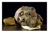 Wax Anatomical Sculpture of an Old Man's Head Giclee Print by Gaetano Zumbo