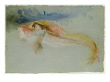 A Gurnard Giclee Print by Joseph Mallord William Turner