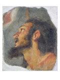 The Head of St. John the Baptist, Fragment from a Fresco Giclee Print by Bernardo Strozzi