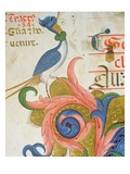 Fantastical Bird with Human Head Standing on Corner of an Historiated Initial, Detail of Choir Book Giclee Print by Filippo Di Matteo Torelli