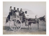A Crowded Wagon Drawn by a Mule, Palermo, Sicily, c.1880 Giclee Print by Giorgio Sommer