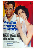 Cat On a Hot Tin Roof, Italian Movie Poster, 1958 Prints