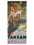 Tarzan The Ape Man, German Movie Poster, 1932 Prints