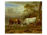 Two Bulls with Locked Horns, 1653 Giclee Print by Paulus Potter