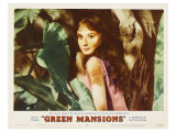Green Mansions, 1959 Gicl&#233;e-Druck