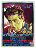 East of Eden, Italian Movie Poster, 1955 Prints