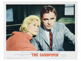 The Sandpiper, 1965 Prints