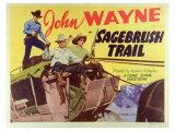 Sagebrush Trail, 1933 Posters