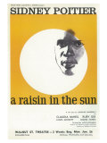 Raisin au soleil, Un|A Raisin In The Sun Reproduction procédé giclée
