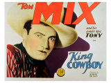 King Cowboy, 1928 Posters
