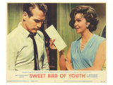 Sweet Bird of Youth, 1962 Posters