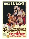 Spooks Run Wild, 1941 Plakaty