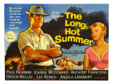 The Long Hot Summer, UK Movie Poster, 1958 Lámina giclée