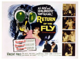 Return of the Fly, 1959 Giclee-vedos