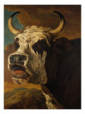 Head of Cow Giclee Print by Paul Potter