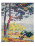 Afternoon at Pardigon Reproduction procédé giclée par Henri Edmond Cross