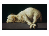 Agnus Dei (Lamb of God) Giclee Print by Francisco de Zurbaran