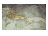 Stag Attacked by a Dog Giclee Print