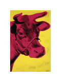 Cow, c.1966 (Yellow and Pink) Giclee Print by Andy Warhol